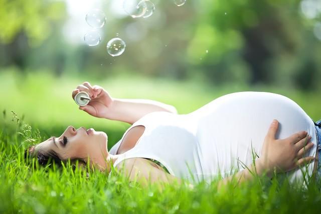 gravid slapper av i gresset