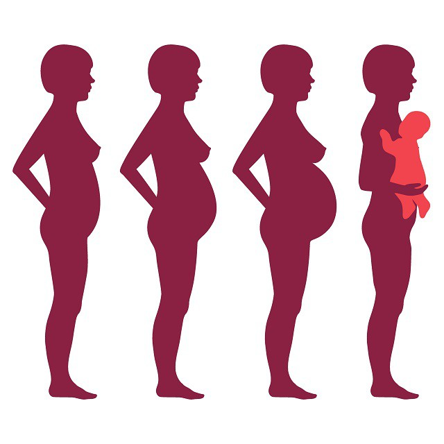 Endringer gjennom svangerskapet